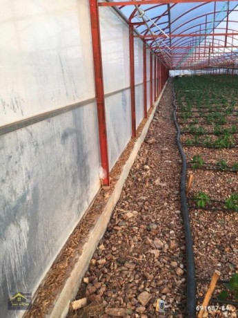 kumluca-mavikent-project-for-sale-last-system-greenhouse-big-0