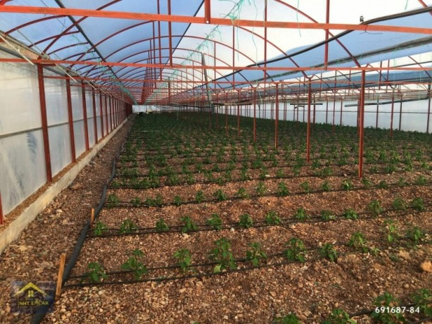 kumluca-mavikent-project-for-sale-last-system-greenhouse-big-6