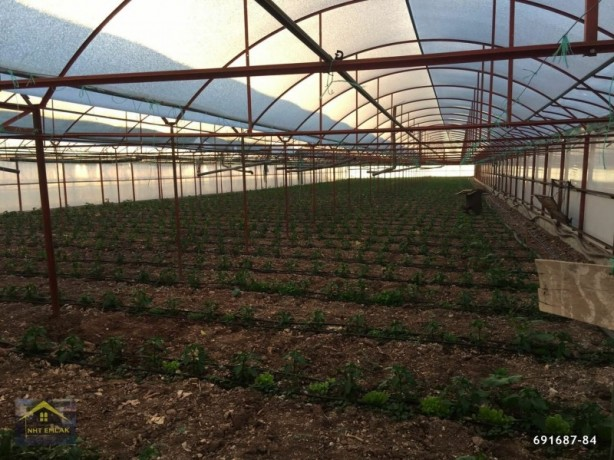 kumluca-mavikent-project-for-sale-last-system-greenhouse-big-2