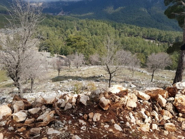 cheap-1000m2-cottage-house-land-for-sale-in-kemer-beycik-high-mediterranean-mountain-big-2