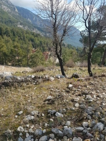 cheap-1000m2-cottage-house-land-for-sale-in-kemer-beycik-high-mediterranean-mountain-big-7
