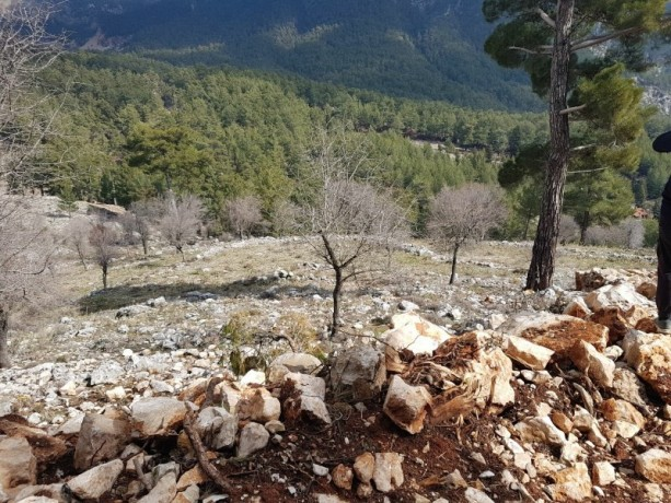 cheap-1000m2-cottage-house-land-for-sale-in-kemer-beycik-high-mediterranean-mountain-big-3