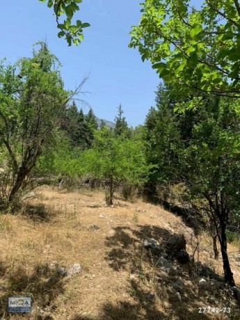 3045-m2-land-for-sale-in-kemer-beycik-mountain-village-old-house-big-11