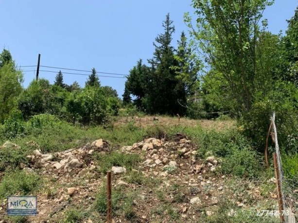 3045-m2-land-for-sale-in-kemer-beycik-mountain-village-old-house-big-6
