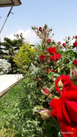 detached-house-for-sale-in-finike-antalya-big-8