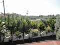 antalya-rural-villa-for-sale-in-duaci-kepez-district-small-4