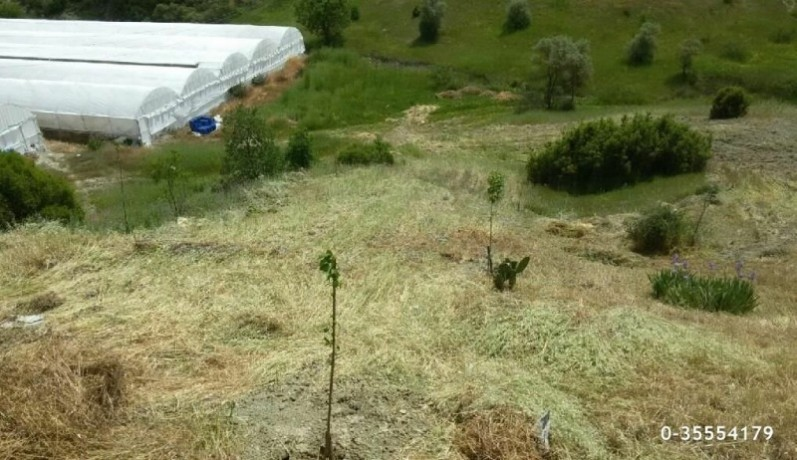 33000m2-land-in-kas-gesar-turkish-farm-house-registered-to-the-deed-and-5300-m2-greenhouse-big-8