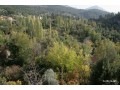 plot-with-bargain-view-in-the-most-beautiful-plateau-of-antalya-small-4