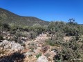 53000-m2-kas-land-incredible-opportunity-for-investment-2-km-to-the-sea-small-4