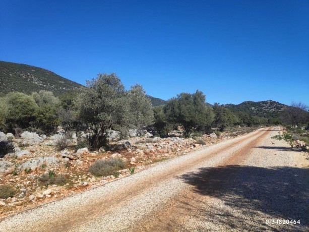53000-m2-kas-land-incredible-opportunity-for-investment-2-km-to-the-sea-big-6