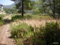 land-for-sale-in-karaoz-kumluca-real-estate-small-2