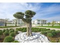turkish-new-mansion-for-sale-in-complex-by-beach-small-8