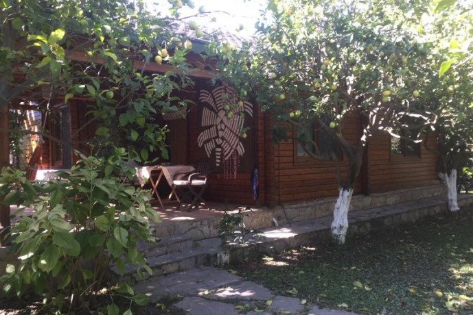 cirali-olympos-13-wooden-home-lodge-for-sale-on-beach-big-8