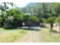bungalow-wooden-house-for-rent-in-cirali-beach-small-7