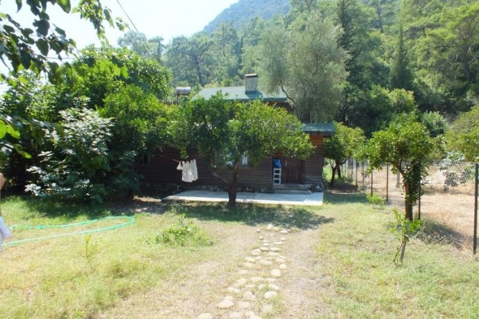 bungalow-wooden-house-for-rent-in-cirali-beach-big-7