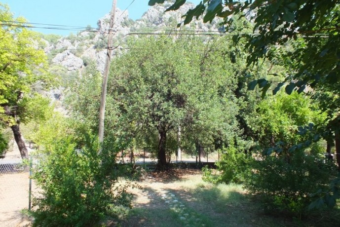 bungalow-wooden-house-for-rent-in-cirali-beach-big-8
