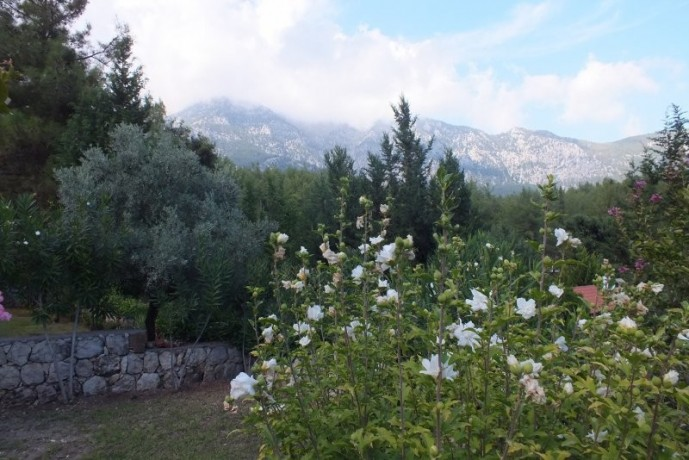uncomplete-opportunity-to-renovate-house-for-sale-in-kemer-big-10