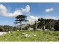 bungalow-land-for-sale-in-beycik-antalya-small-1