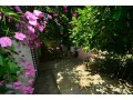 detached-villa-for-sale-in-alanya-small-3