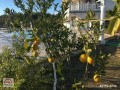 nice-alanya-incekum-villa-for-sale-3-floors-sea-view-7-bedroom-small-9