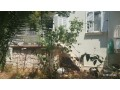 825-m2-2-1-apartment-in-kas-center-from-owner-turkish-riviera-small-3