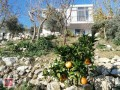summer-villa-for-sale-in-kas-islamlar-small-8
