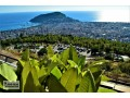 9000-m2-alanya-for-sale-sea-views-suitable-for-field-bananas-and-avocados-small-5