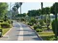 9000-m2-alanya-for-sale-sea-views-suitable-for-field-bananas-and-avocados-small-2