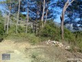 3940-m2-land-for-sale-in-antalya-olympos-for-new-turizm-facility-small-8