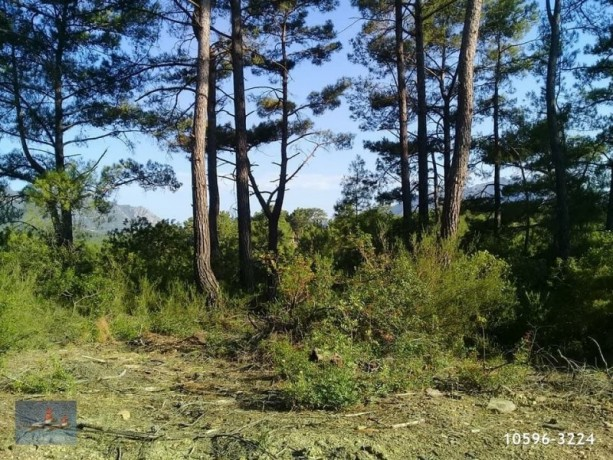 3940-m2-land-for-sale-in-antalya-olympos-for-new-turizm-facility-big-6
