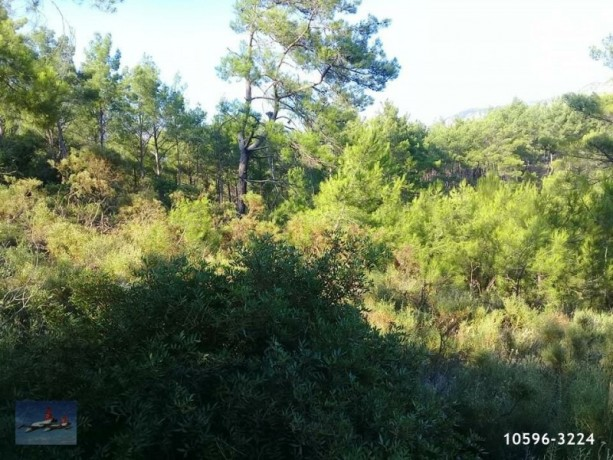 3940-m2-land-for-sale-in-antalya-olympos-for-new-turizm-facility-big-3