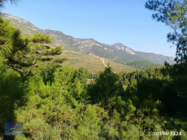 3940-m2-land-for-sale-in-antalya-olympos-for-new-turizm-facility-big-5