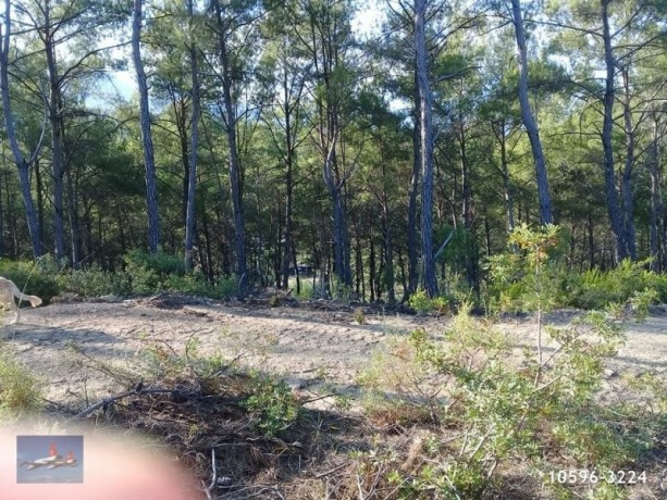 3940-m2-land-for-sale-in-antalya-olympos-for-new-turizm-facility-big-2