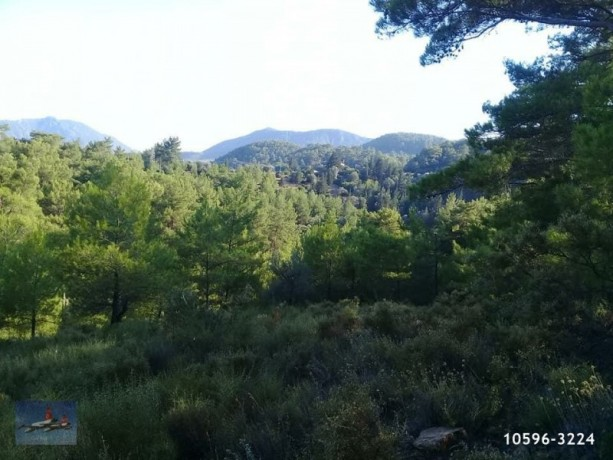 3940-m2-farm-land-for-sale-in-antalya-olympos-for-nature-living-big-7