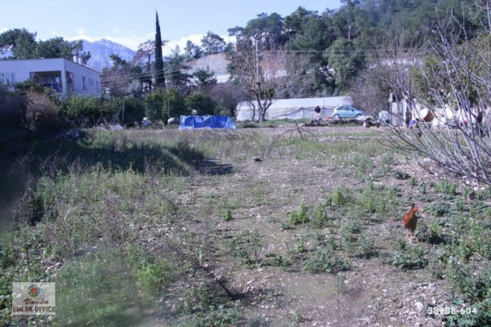 kemer-resort-new-neighborhood-rear-parcel-forest-1369-m2-big-4