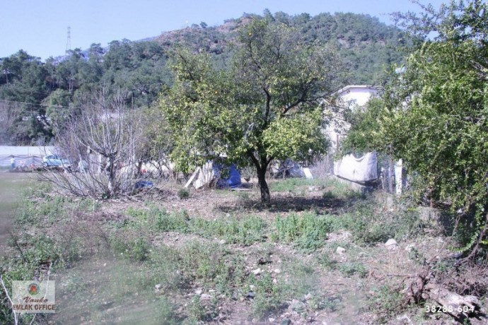 kemer-resort-new-neighborhood-rear-parcel-forest-1369-m2-big-3