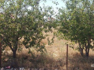 KORKUTELI RURAL MOUNTAIN COOL AIR SUMMERS, BARGAIN CORNER 675 MT PLOT