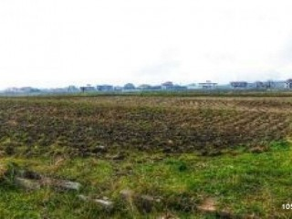 1.000 m2 CHEAP TURKEY AGRICULTURE LAND FOR SALE IN ANTALYA, KADRIYE JUNCTION