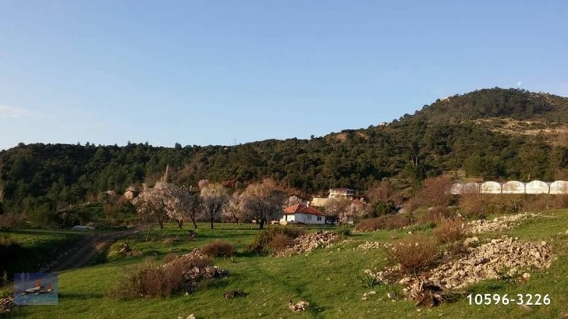 20000-m2-land-for-sale-in-adrasan-near-to-the-sea-with-a-beautiful-mountain-view-big-5