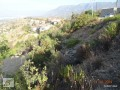 755-m2-land-2-parcel-for-1-land-price-in-alanya-small-1