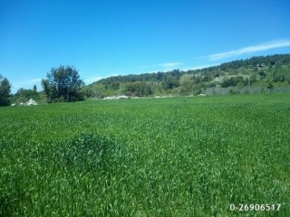 9,300 m2 Rural Village Land for sale in kaş, Arma region