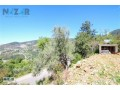 1000-m2-full-sea-and-nature-view-land-for-sale-in-alanya-bektas-small-4