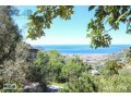 1000-m2-full-sea-and-nature-view-land-for-sale-in-alanya-bektas-small-5