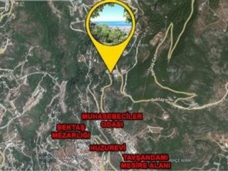 1.000 m2 full Sea and Nature View land for sale in Alanya Bektaş