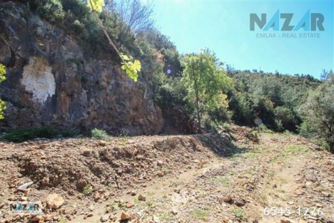 1000-m2-full-sea-and-nature-view-land-for-sale-in-alanya-bektas-big-2
