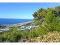 villa-construction-house-land-for-in-gazipasa-near-to-the-beach-with-sea-view-small-3