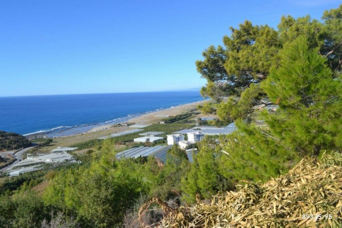 villa-construction-house-land-for-in-gazipasa-near-to-the-beach-with-sea-view-big-8