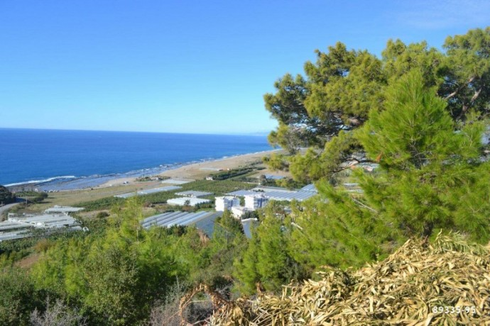 villa-construction-house-land-for-in-gazipasa-near-to-the-beach-with-sea-view-big-3