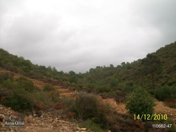 2000-m2-land-for-sale-with-sea-view-in-yesiloz-alanya-big-1