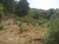 560-m2-new-houseland-for-sale-between-mountains-tepe-alanya-small-18
